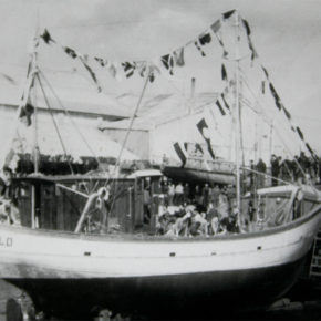 campagnelo